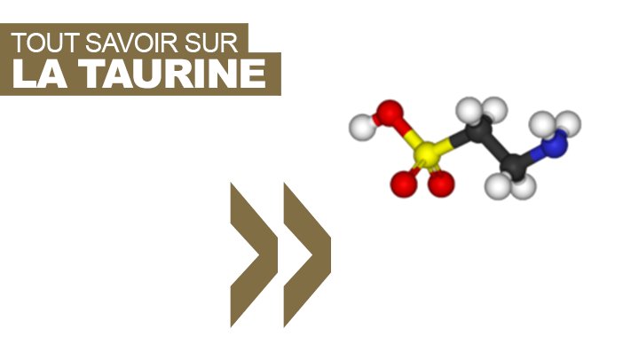 taurine.png