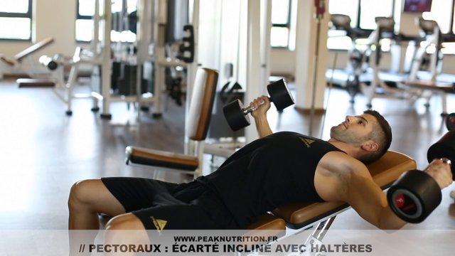 Exercices pectoraux nutrition outlet - Developpe incline avec halteres ...