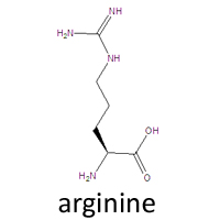 LAlanine Chemical Structure Amino Acid Use to navigate This is the chemical structure of Lalanine Photo Credit Todd Helmenstine Sign Up
