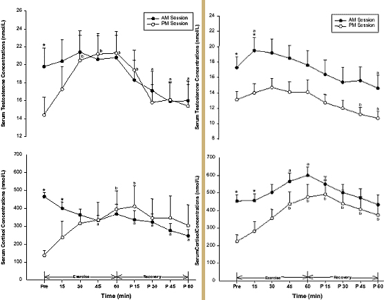 impact of testosterone