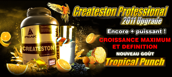 P'tit nouveau sur le FORUM Createston_professional